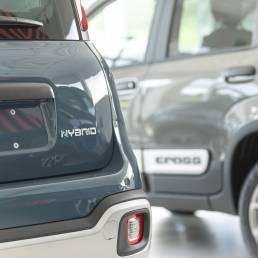 Barigelli Auto: Vendita - Riparazioni - Assistenza - Collaudi - Organizzato Fiat 06